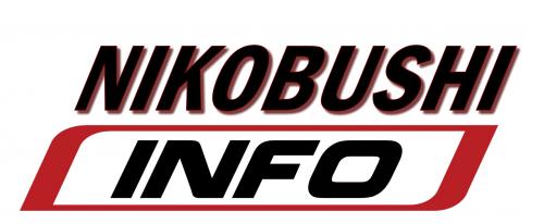 Nikobushi Karate Info!