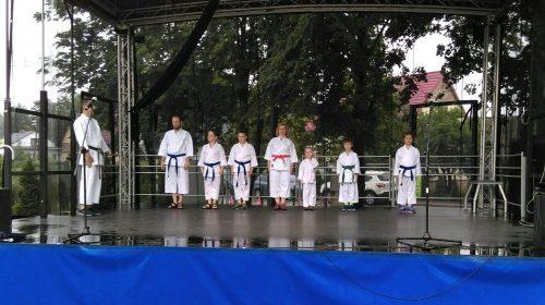 Piknik Rodzinny z Okazji Dnia Matki, 26 maja 2018-Grodzisk Mazowiecki