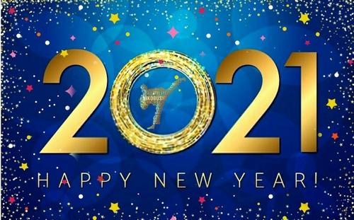 Podsumowanie roku 2020 w MKKT NIKOBUSHI